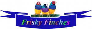 Gouldian Finch Breeding Information-Finch Supplies-Lady Gouldian Finches-Finch Breeding Supplies